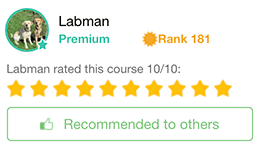 Labman's Review of Wealthy Affiliate Training