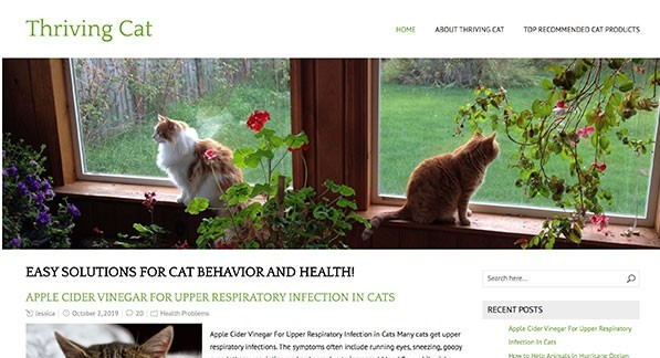 Thriving Cat Wealthy Affiliate website example